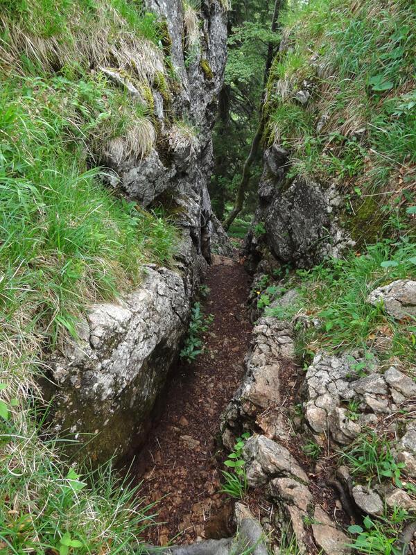Zellerhorn und Laubenstein: Kletterstelle am Hammerstein: Der meist feuchte Kamin am Hammerstein wurde mit einer Seilsicherung entschärft.