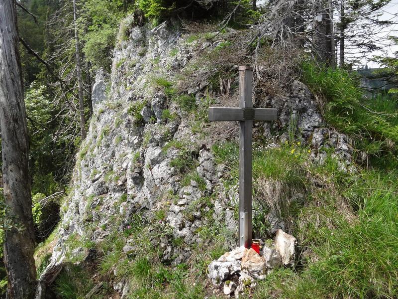 Zellerhorn und Laubenstein: Hammerstein: Links sieht man das Kreuz am Hammerstein und dahinter ist der Laubenstein zu erkennen. Die Erhebung in der rechten Bildhälfte ist der Riesenberg.