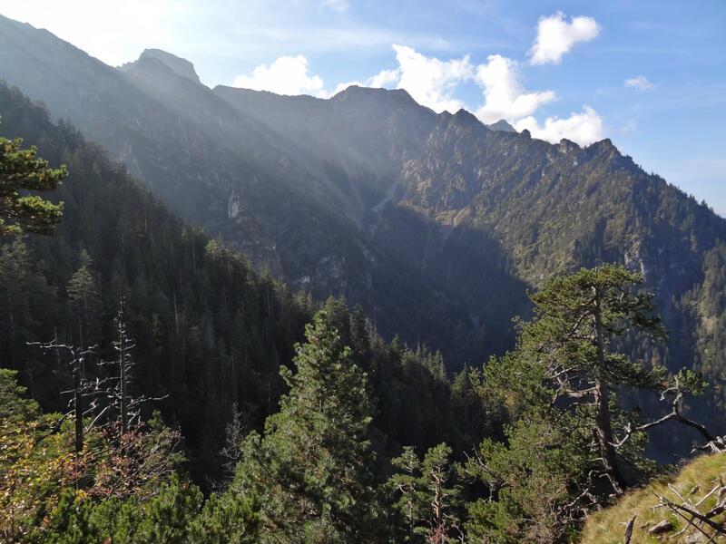 Zwölferköpfl über Mineckergrat: Archtal: In der steilen Flanke auf Seiten des Archtals ist die Vegetation noch völlig ursprünglich.