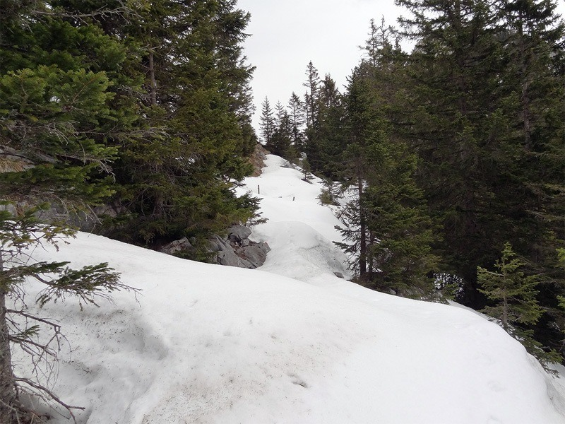 Schönleitenschrofen: Unter den Felswänden am Roßgern liegt extra viel Schnee.
