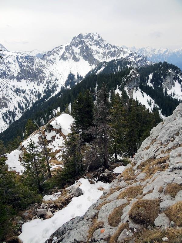 Schönleitenschrofen: Schlüsselstelle am Schönleitenschrofen: Glück gehabt! Die Felsen an der Schlüsselstelle am Schönleitenschrofen sind bereits ausgeapert. Bei Schnee und Eis ist die Stelle gefährlich.