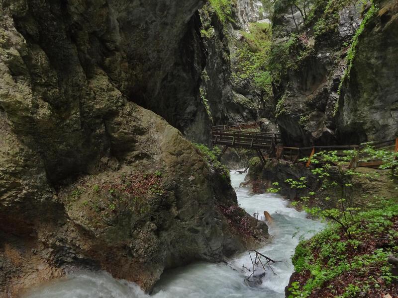 St. Georgenberg und Wolfsklamm: Buchenwald: Schloss Tratzberg ist von bemerkenswert schönen Buchenwäldern umgeben, die zu einem geschützten Landschaftsteil erklärt wurden.