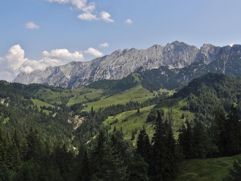 Widauersteig auf den Scheffauer: Wilder Kaiser: Was für ein Anblick! Die saftigen grünen Weiden der Steinbergalm vor der mächtigen Felsmauer des Wilden Kaisers.