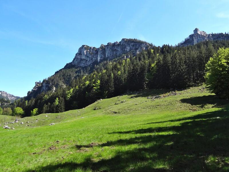 Gedererwand: Gedererwand: Die Nordseite der Gedererwand. Der höchste Punkt befindet sich ganz am linken Ende.