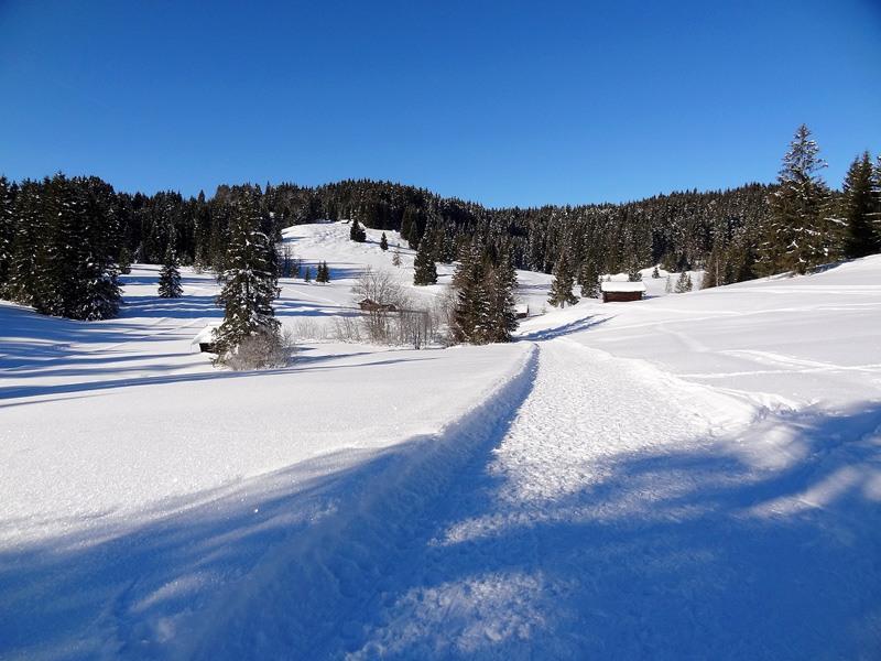 Wamberg-Überschreitung: Ein präparierter Winterwanderweg führt von Schloss Kranzbach zur Elmauer Alm.