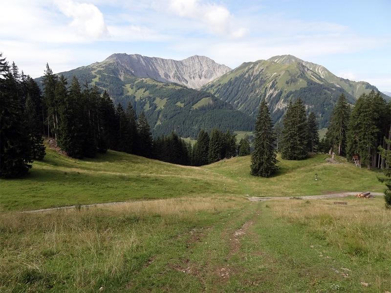 Daniel und Upsspitze: Grubigstein und Gartner Wand: Ab dem Kohlberg lichtet sich der Wald. Gegenüber sind der Grubigstein und die Gartner Wand in den Lechtaler Alpen zu sehen.