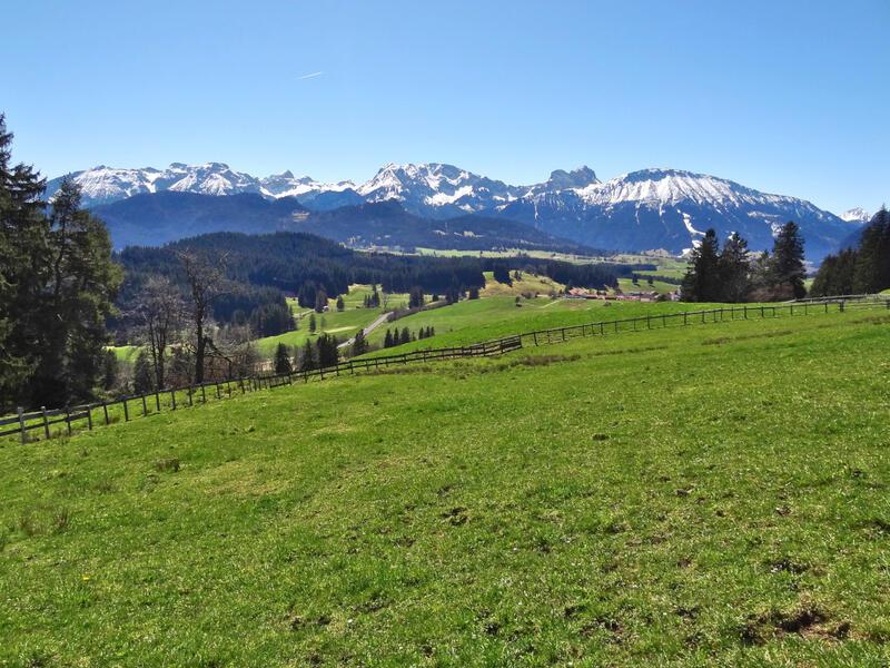 Hohenfreyberg und Eisenberg: Drachenköpfle: Mit der Aussicht kann das Drachenköpfle nicht wirklich punkten. Das Gipfelkreuz ist zugleich ein Kriegerdenkmal.