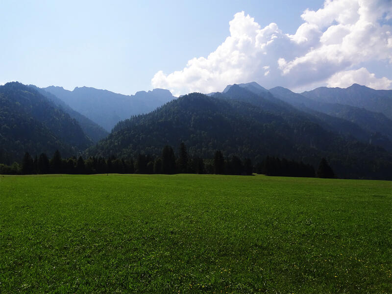 Sieben Quellen, Archtalschlucht und Asamklamm: Estergebirge: Blick von Eschenlohe ins Estergebirge. Die saftigen Wiesen im Vordergrund wachsen auf dem Schwemmkegel von Urlaine und Eschenlaine.