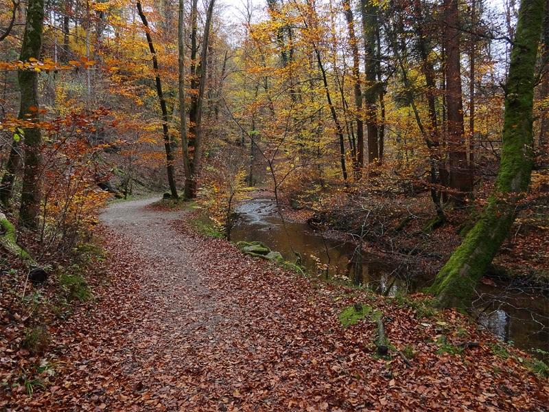 Maisinger Schlucht und Maisinger See: Maisinger Schlucht: Auf einem befestigten Wanderweg geht es am Bach entlang durch die Maisinger Schlucht.