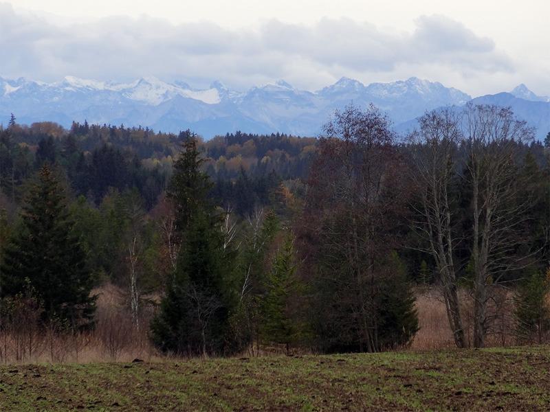 Maisinger Schlucht und Maisinger See: Karwendel: An manchen Tagen sieht man vom Maisinger See bis ins Karwendel.