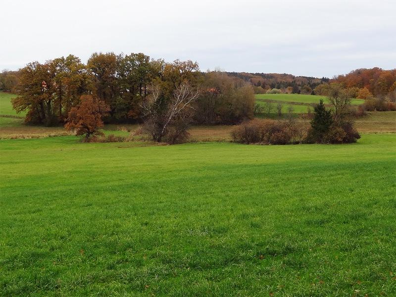 Maisinger Schlucht und Maisinger See: Die parkähnliche Landschaft bei Maising ist wunderschön zum Wandern.