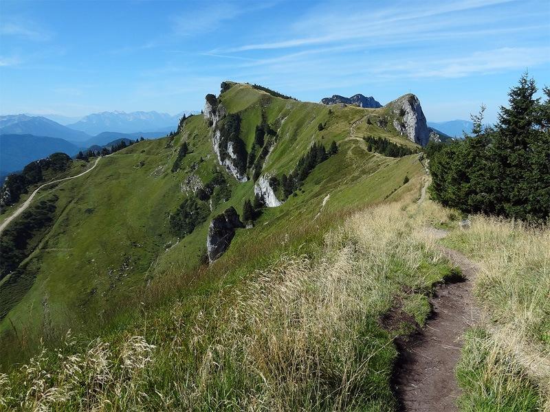 Benediktenwand vom Brauneck: Latschenkopf: Das erste Zwischenziel auf dem Weg Richtung Benediktenwand ist der Latschenkopf. Der Zacken rechts davon heißt Vorderer Kirchstein.