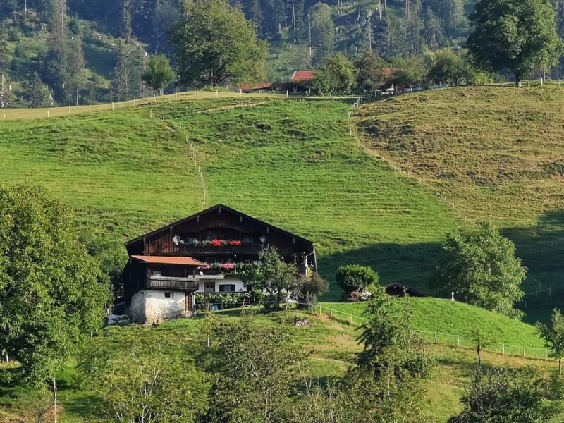 Wildbarren und Bichlersee: Idyllisch gelegene Höfe zu Füßen des Wildbarrens am Schindlberg bei Agg.