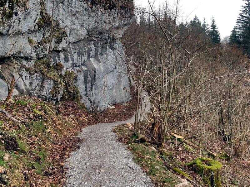Dreiländereck am Schwarzenberg: Unterwegs auf dem geologischen Rundweg GEOgrenzGÄNGER zwischen Ziegelwies und Pinswang.