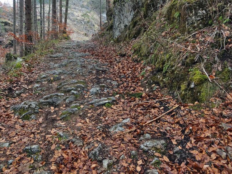 Dreiländereck am Schwarzenberg: Römerstraße am Stiglberg: Ob es sich bei dieser alten Straße am Stiglberg bei Unterpinswang um die Via Claudia Augusta handelt ist umstritten.