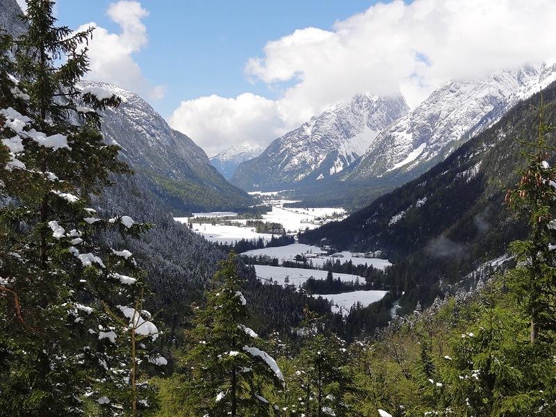 Leutaschklamm, Ederkanzel und Lautersee: Leutaschtal: Aussicht von der Ederkanzel ins Leutaschtal, das sich dank der Eisheiligen recht winterlich präsentiert.