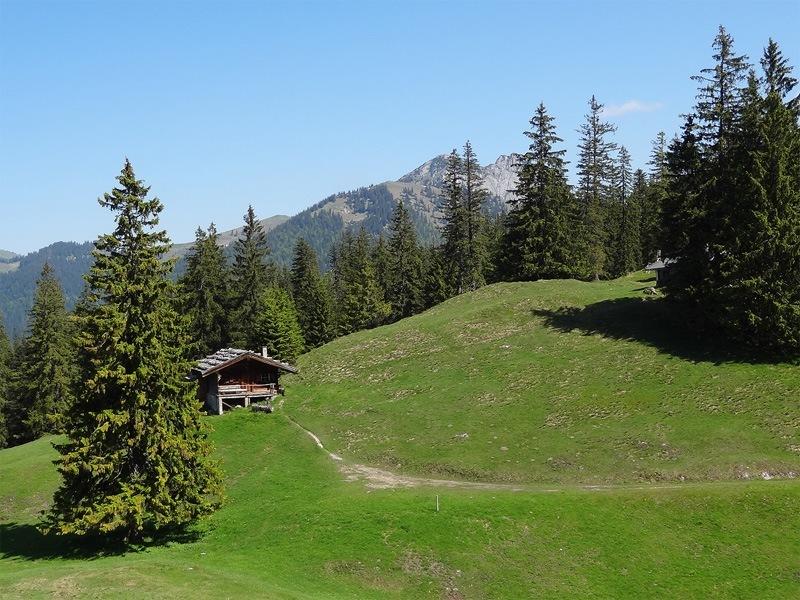 Reitstein und Platteneck: Bodigbergalm: Auf der Bodigbergalm grasen schon lange keine Kühe mehr. Ihre Abgeschiedenheit imponiert. Im Hintergrund, teilweise von den Bäumen verdeckt, sind Roß- und Buchstein zu sehen.