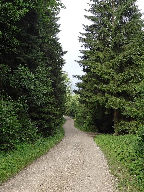 Probstenwand über Probstalm: Der Anmarsch ins Längental ist zugegebenermaßen ziemlich eintönig.