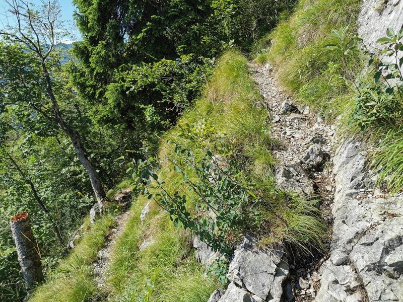 Fuderheuberg: Die Steige am Fuderheuberg sind schmal und stellenweise ausgesetzt.