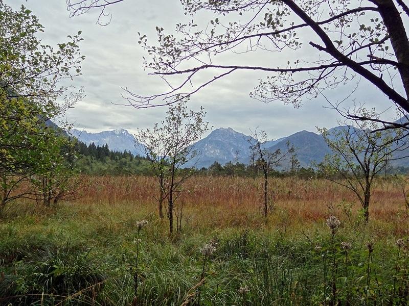 Wilde Wege um die Hohe Kisten: Loisachtal: Zwischen Eschenlohe und Oberau erstreckt sich entlang der Loisach das ökologisch wertvolle Pfrühlmoos.