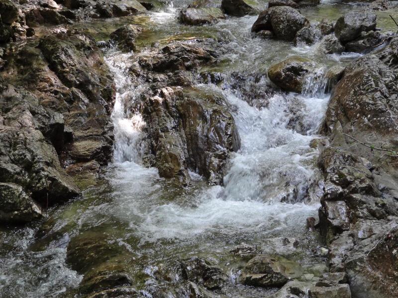Kampenwand von Hainbach: Klausgraben: Von Hainbach geht es durch den schattigen Klausgraben immer am Bach entlang zur Dalsenalm.