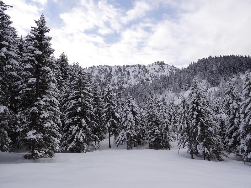 August-Schuster-Haus via Kolbensattel: Langenthal: Bevor man am Kolbensattel wieder das Skigebiet erreicht, sollte man die Ruhe im Langenthal noch ausgiebig genießen.
