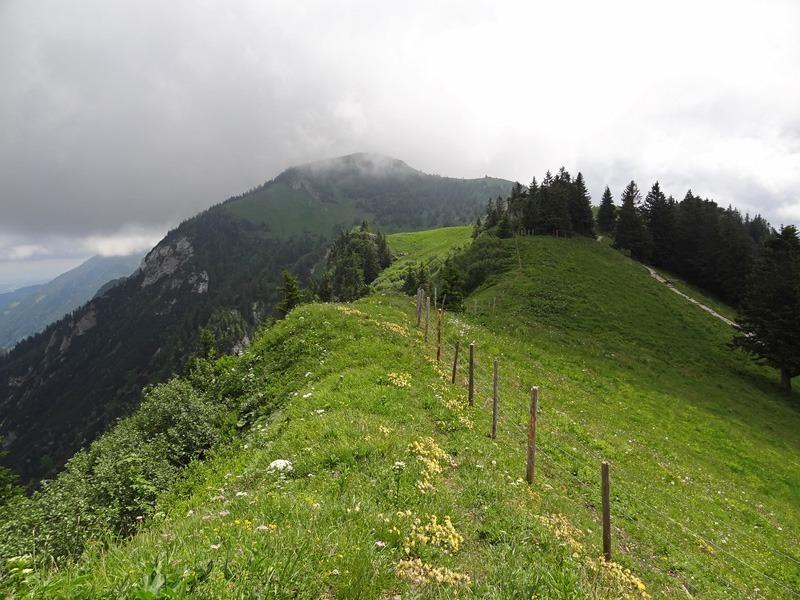 Hochlerch und Zwölferspitz: Hochgern: Unterwegs zwischen Zwölferspitz und Hochgern. Rechts verläuft der Wanderweg zum Hochgernhaus.