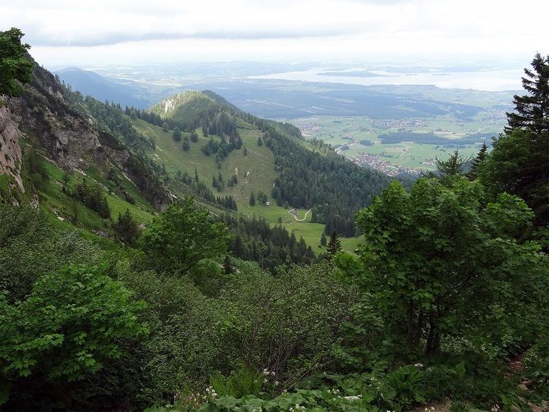 Hochlerch und Zwölferspitz: Staudacher Alm: Abstieg zur Staudacher Alm mit dem Chiemsee im Hintergrund.