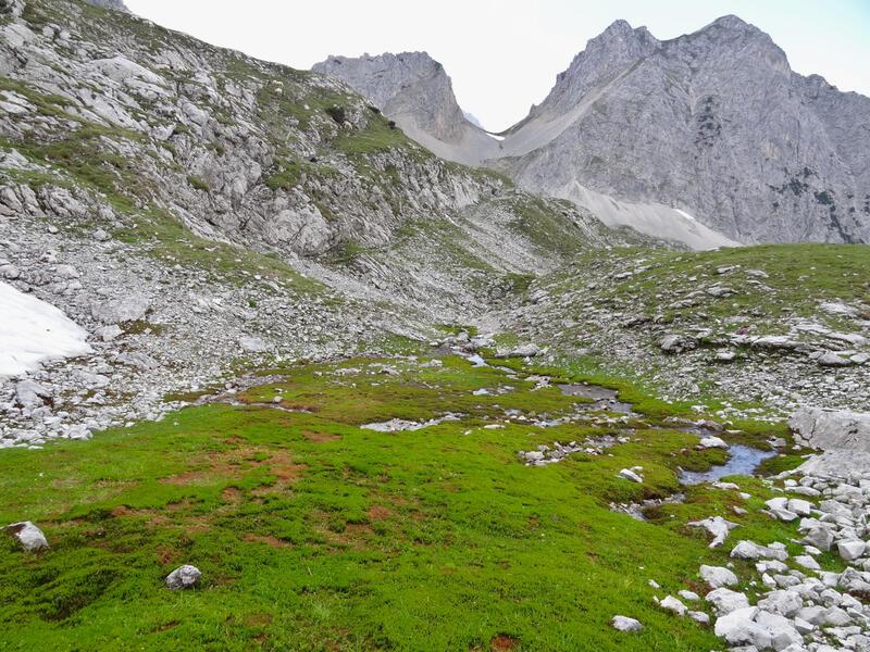 Breitenkopf: Igelskar: Diese Quelle westlich der Breitenkopfhütte ist ein lieblicher Ort. Dahinter sind die verschiedenen Igelskopfgipfel zu sehen.