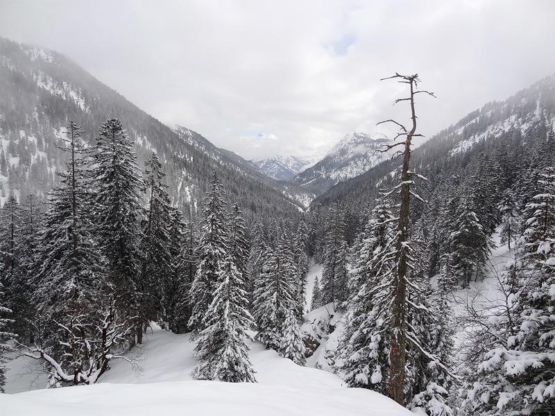 Koflerjoch: Pöllattal: Das Pöllattal ist ein guter Ort für ruhebedürftige Winterwanderer.